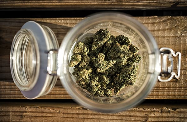 Jar Full of Cannabis inside Dispensary