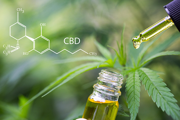 CBD Oil with Hemp Plant