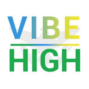 VIBE HIGH Logo